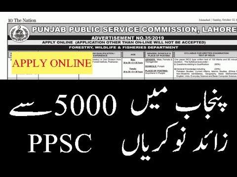 PPSC-Punjab-Public-Service-Commission-Jobs-in-Pakistan-2019-PPSC-5033-Vacancies-Advertisement-No.-35