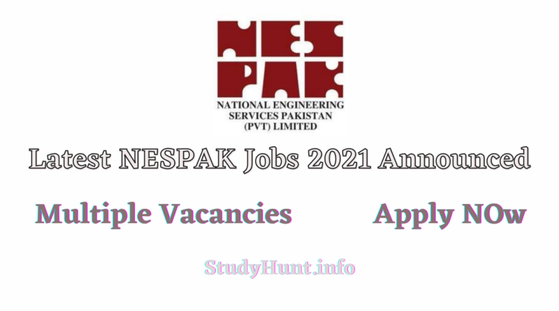 NESPAK Jobs 2021 Apply Online
